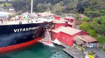 صورة سفينة شحن تصطدم بقصر أثري على مضيق البوسفور