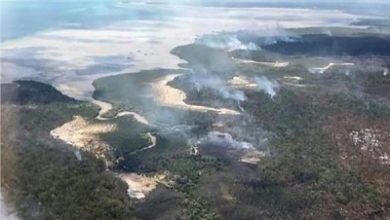 صورة حرائق الغابات تلتهم جزيرة فريزر الاسترالية المدرجة على لائحة التراث العالمي
