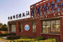 صورة باحثة صينية : مختبر ووهان لم يكن له علاقة بفيروس كورونا