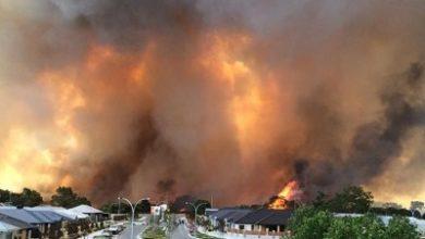 صورة حرائق الغابات تهدد سكان مدينة بيرث في  غرب استراليا