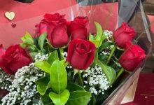 صورة كانبرا تحتفل  ( Valentine Day) بالورود الحمراء